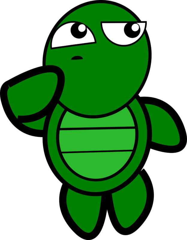 thinking turtle image